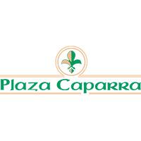 Plaza Caparra